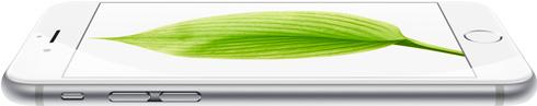 Ремонт iPhone 6 Plus в Екатеринбурге